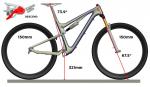 Scott Genius 2013 - Geometrie im Descend Mode