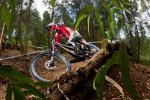 Team Devinci international