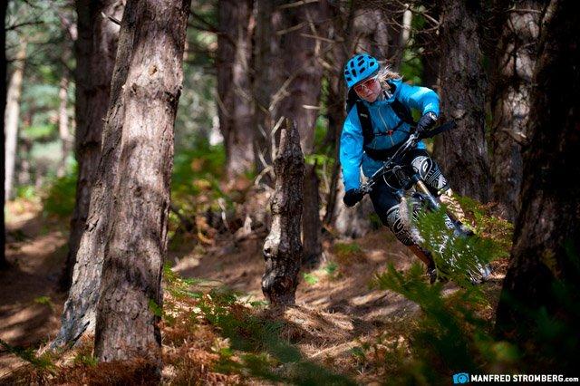 Im lichten Wald ist es gut Radfahren - Foto Manfred Stromberg