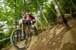 Steve Peat