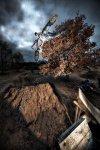 Daniel Roos - IBC-Fotografen bei der Arbeit - 10