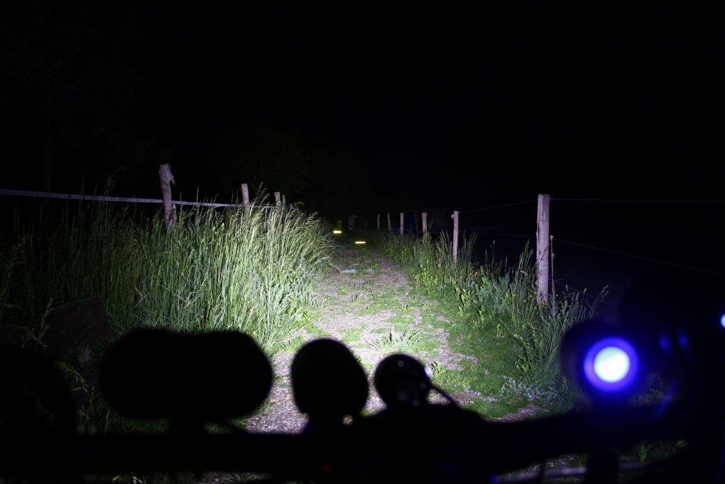 Leuchtdinger LD 4 IBC Lampentest TS 7