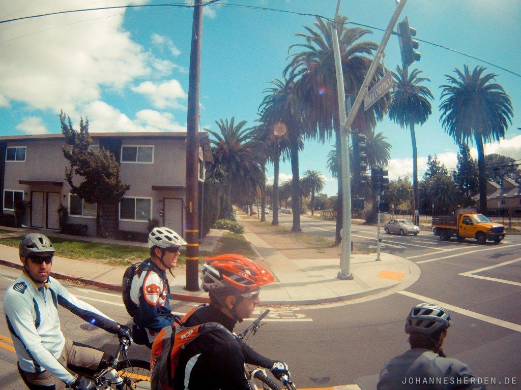 54 Palmen, Straßen, Mountainbiker