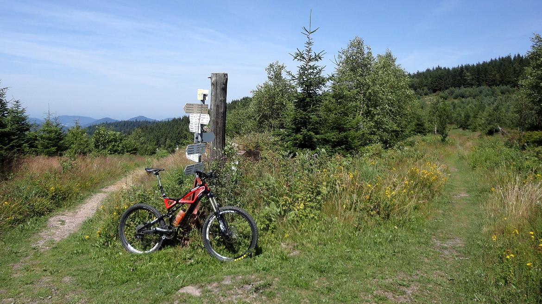 Mtb singletrail schwarzwald