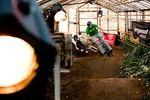 Bergamont Greenhouse Pumptrack Race Bern 11