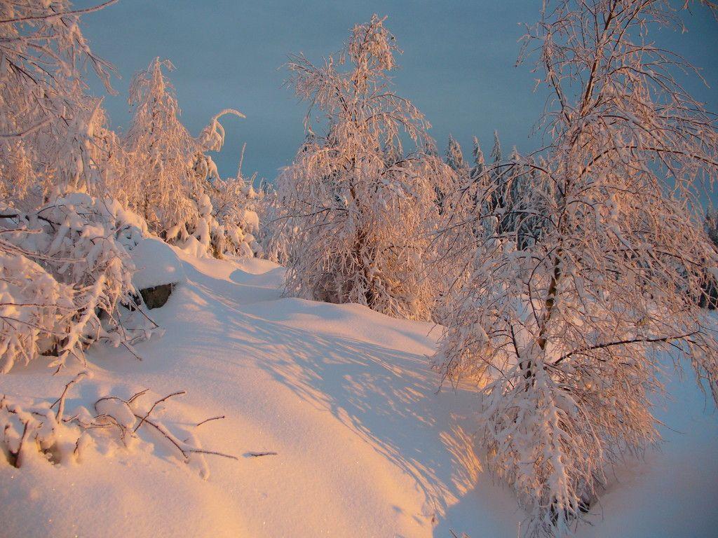 Schneebilder aus aktuellem anlass mtb - Schneebilder kostenlos ...