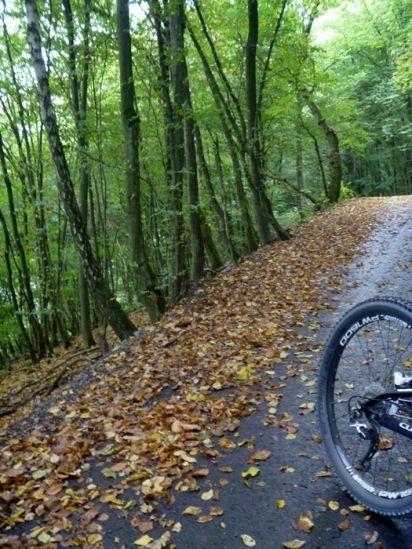 24-9-2012-Trail-Laub-1