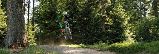 Bikepark Bad Wildbad 139