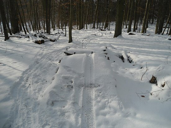 Fr Trail Pansdorf