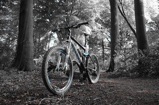 Fotografie und Mountainbike... 2 Hobbys vereint :)