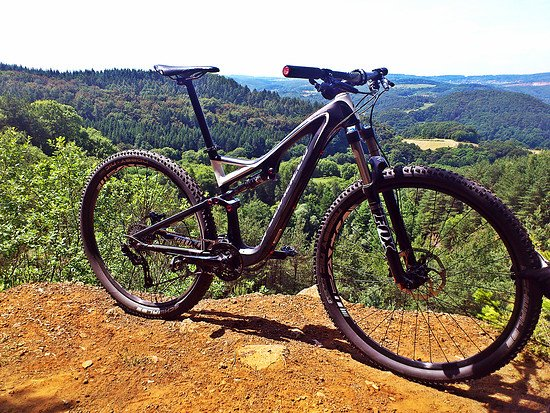 Specialized Stumpjumper Carbon 29 (2013)