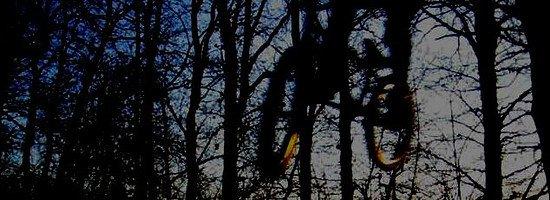 vlcsnap-2013-12-31-18h42m28s207