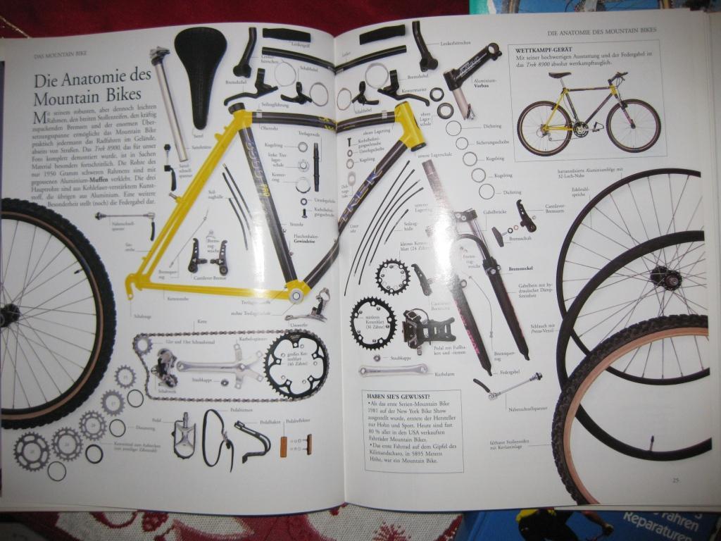 Beste Rad Diagramm Auto Galerie - Schaltplan Serie Circuit ...