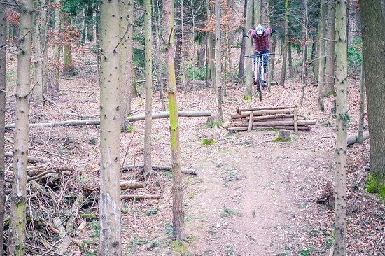 Florenberg Stepdown