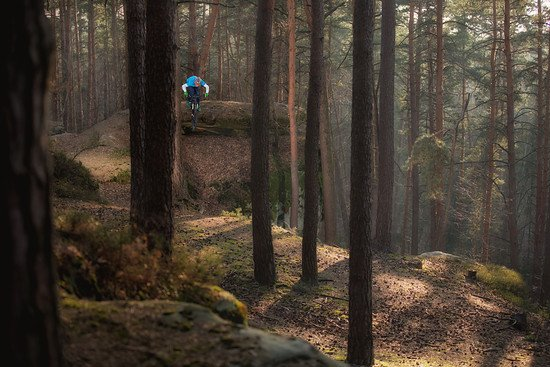 Selfie im Wald
