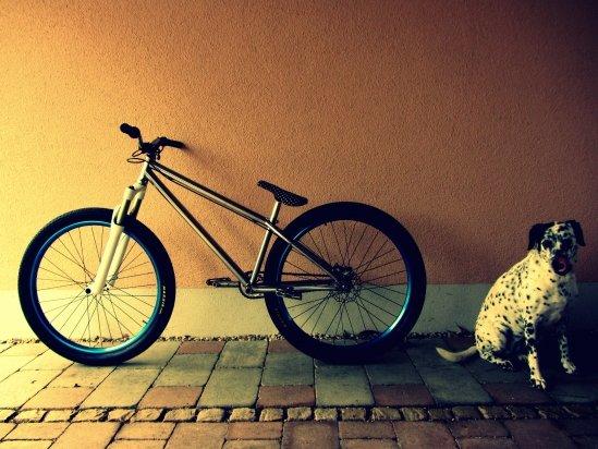 Bike + Hund