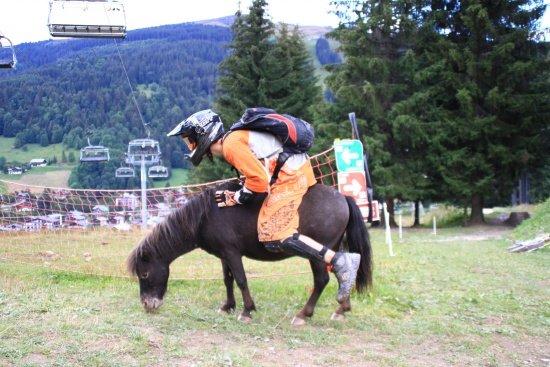 Downhill-pony