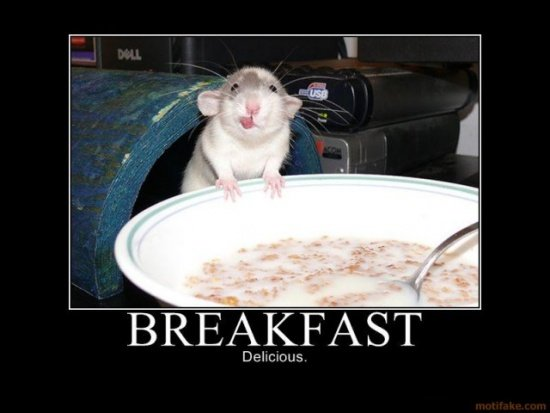 breakfast-demotivational-poster