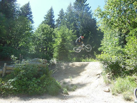 chatel step up