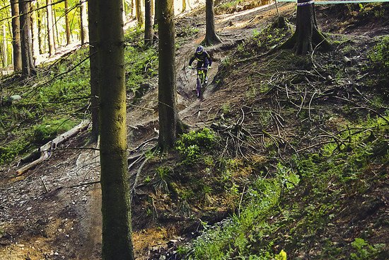 Singletrail Action