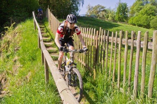 20120505-03L Windberg Lockwitz