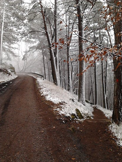 Schnee uff de Kalmit
