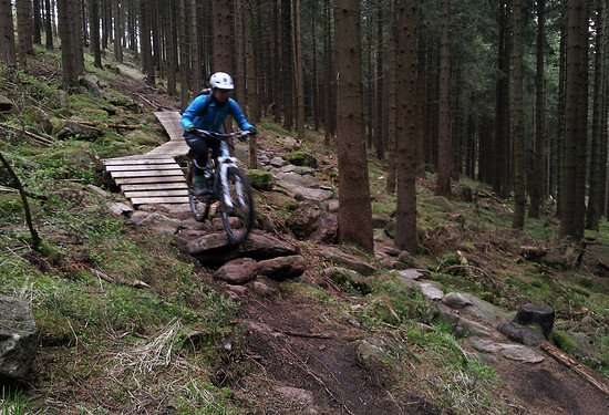 Braunlage Single Trail