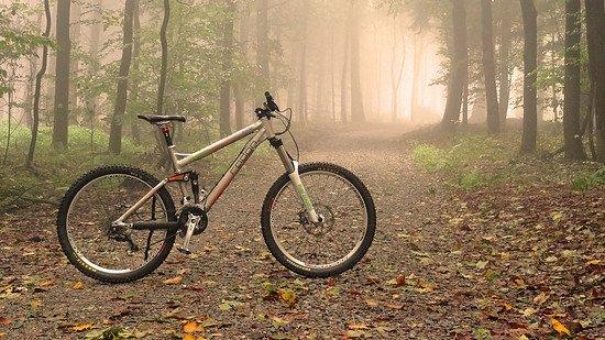 foggy slide