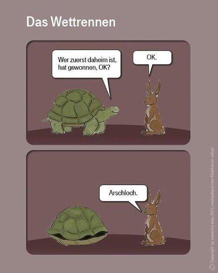 Schildkröte und Hase