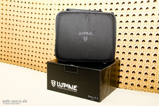 Lupine Betty R-1