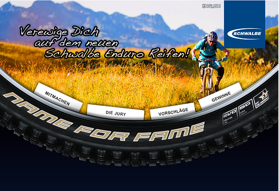Schwalbe Name for Fame