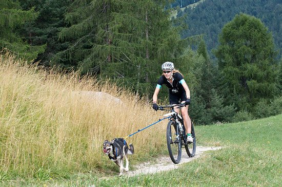 Specialized Days Seefeld, Tirol - August 2013