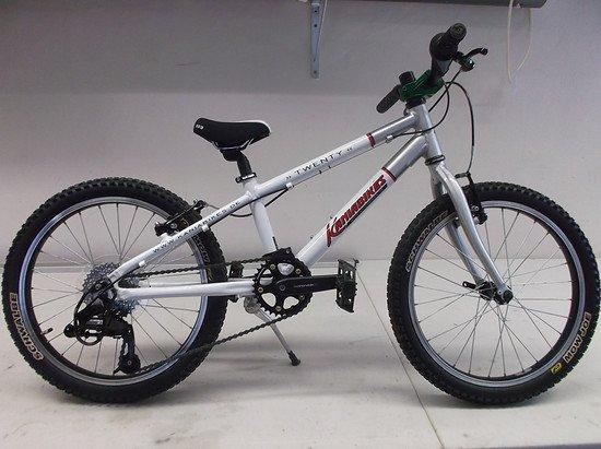 Leni - bike 2