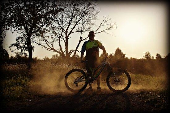 Dust and Sun.