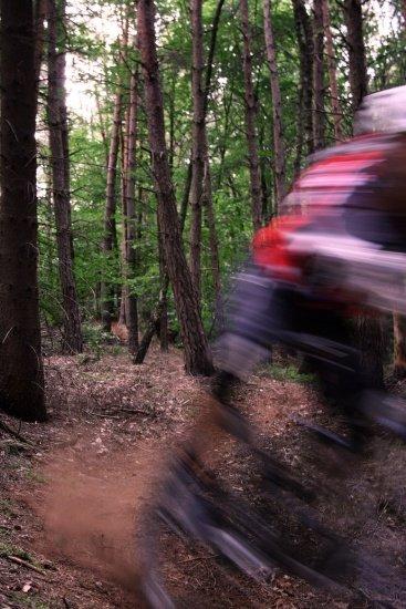 Rock my Trail