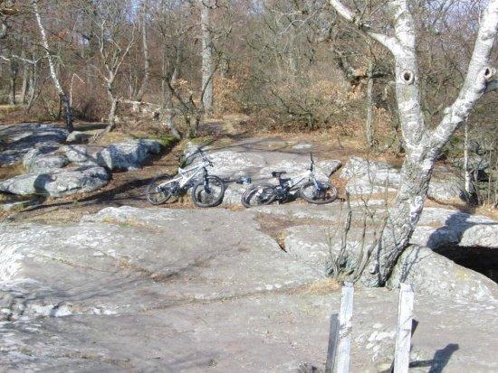 Pfälzer Wald Neidenfels 201202