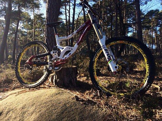 Rocky Mountain Flatline Special Edition Custom
