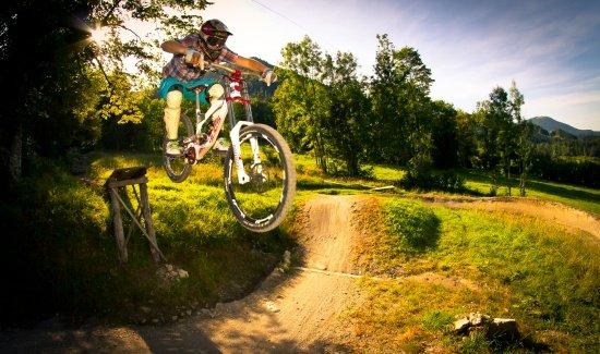 Bikepark Lenggries Roadgap