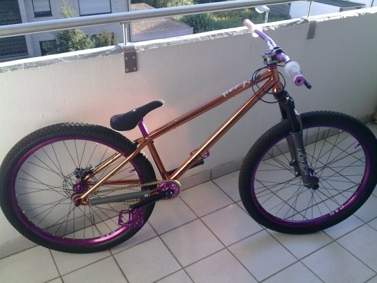 Mutant Bikes x-ray 26