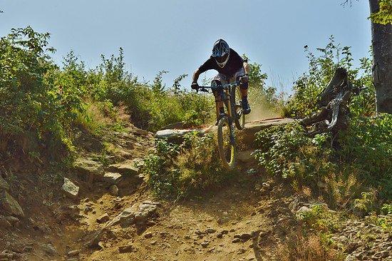 Geißkopf Downhill