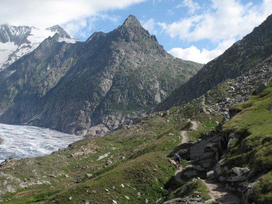 Schweiz 2012 / Aletsch
