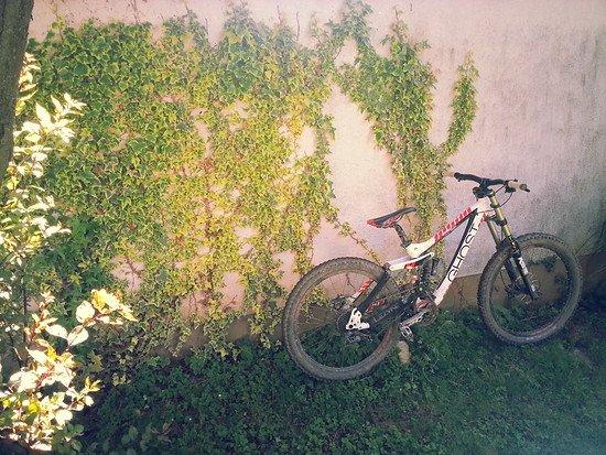 Ride-on Racing Bike von Danny Hartmann