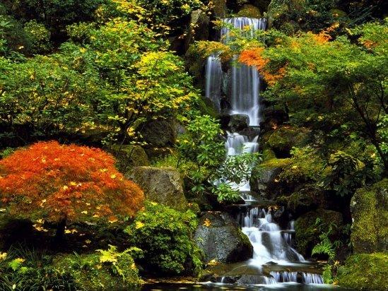 Wasserfall Image gross