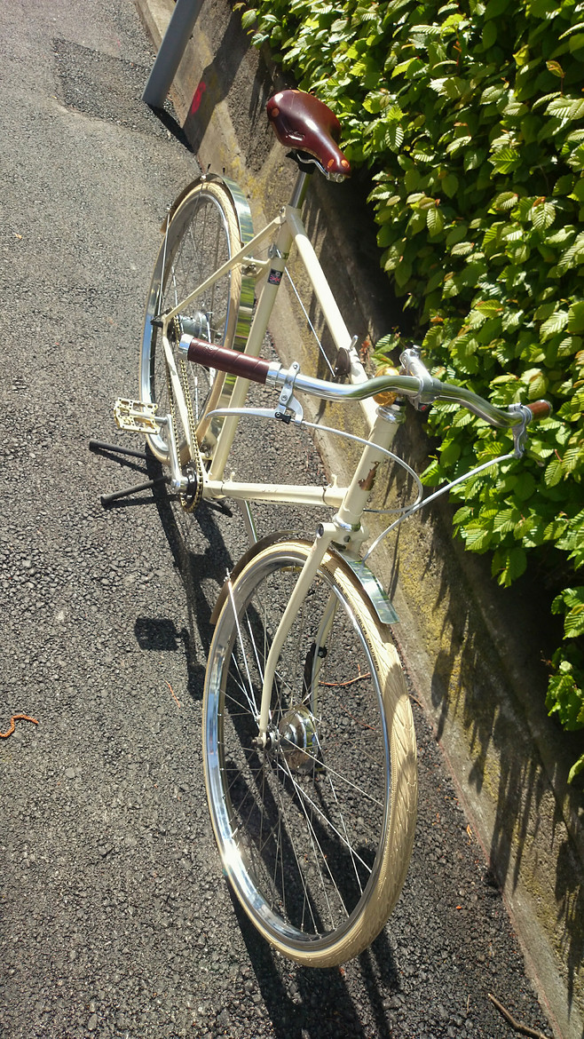 Raleigh All Steel