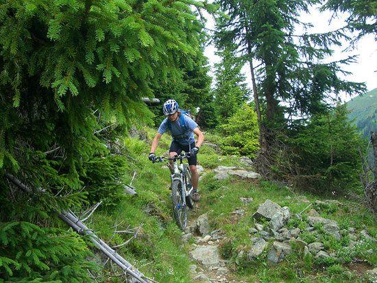 netter Trail