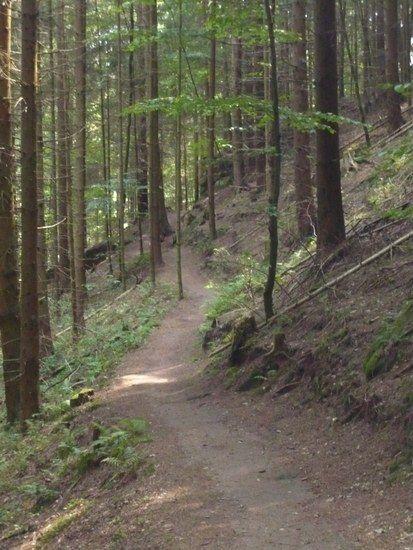 ein Stück des 47km Trails