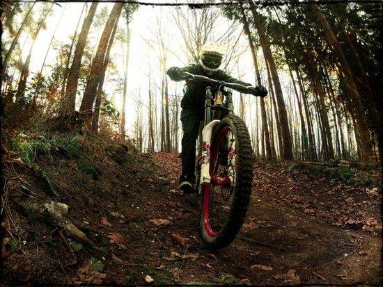 GoPro HD Hero 2 @ Wald