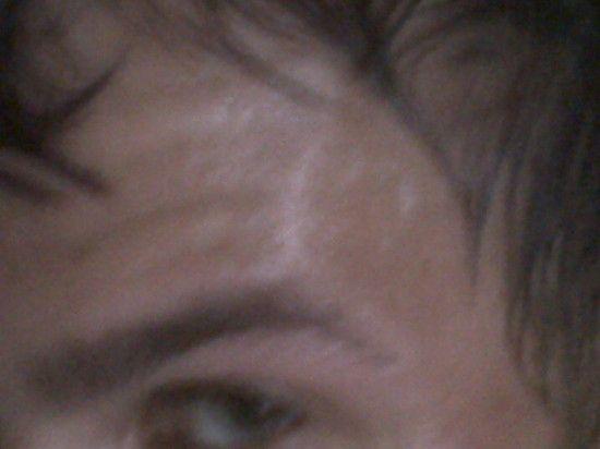 IMG00229-20100716-2110
