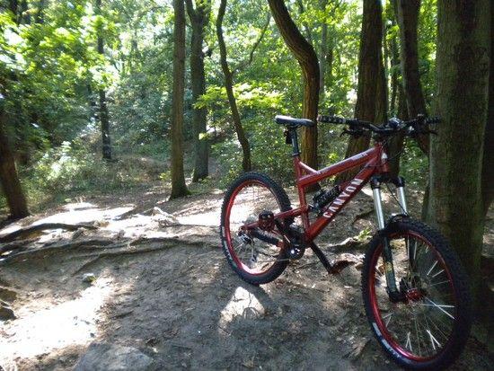 Canyon Torque FR 7 - 2008