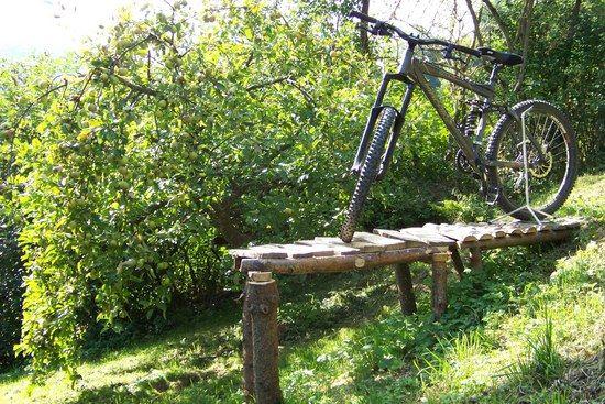 Rockmachine im Garten